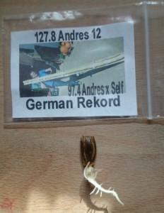 127.8_Andres_2012_Long Gourde_1gekeimt
